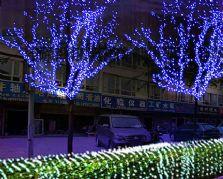 春节灯展——树木亮化