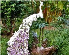 仿真植物雕塑里的孔雀雕塑