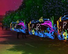 2020年元旦节城市亮化装饰大奖娱乐官网首页——海洋世界