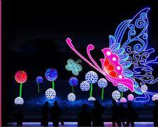 自贡大奖娱乐官网首页公司的小型灯组——蝶舞纷飞